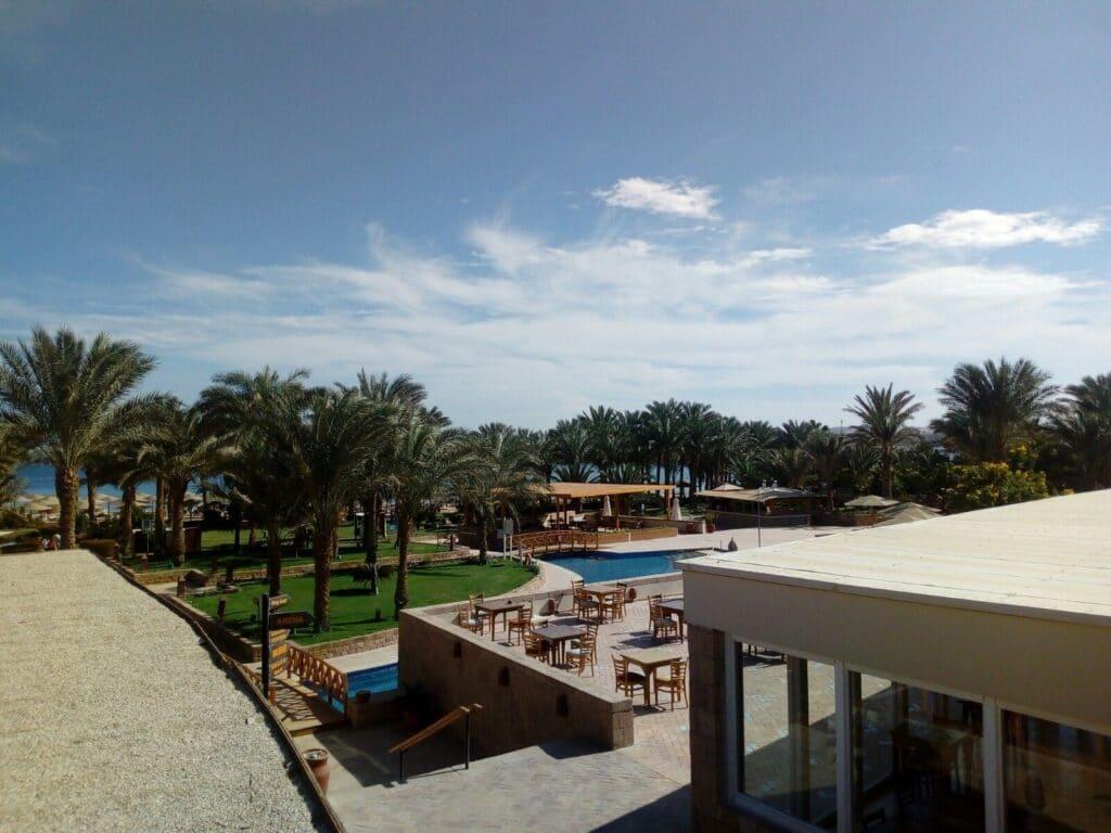 palmovy haj Arabesque hotel